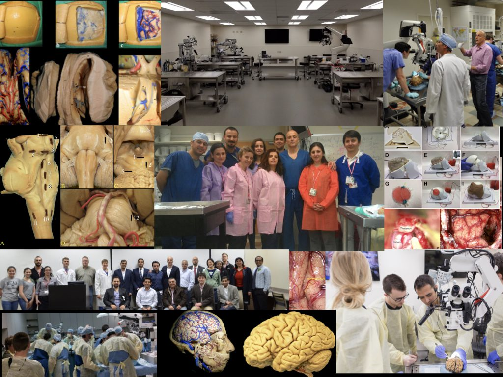 Baskaya Lab collage